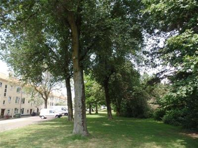 Vestaweg kap 30 bomen t.b.v. waterberging